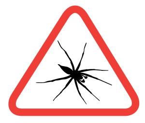 spider-extermination-montana